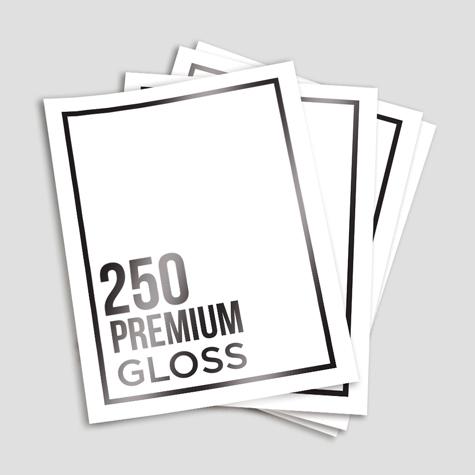 Premium 250 Gloss